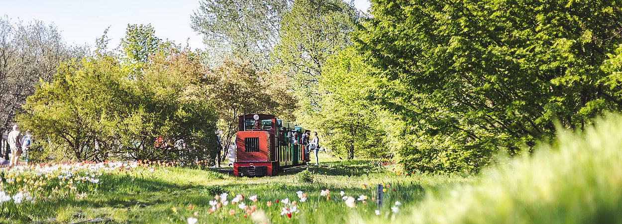 Parkbahn Im Britzer Garten